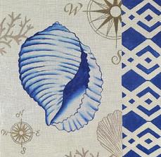 Tahitian Sea Shell
