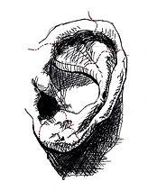 Ear drawing.jpg