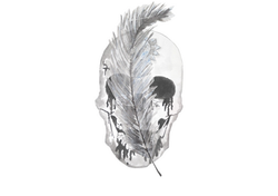 Skull and Feather