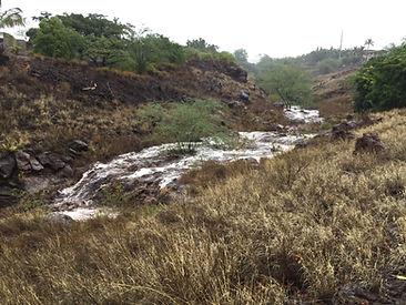 Gulch Waterway.JPG