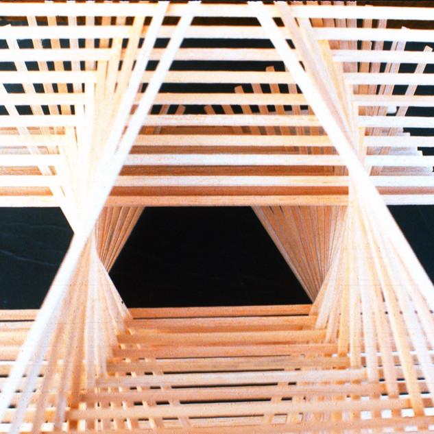 1_Ann Stoddard 3-D Gradation wood