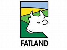 Framework contract with Fatland AS