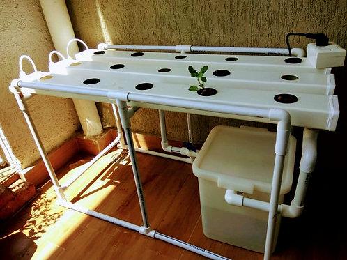 Domestic setup 15 plants