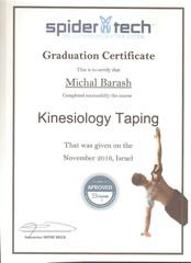 תעודת הכשרה קינזיולוגי טייפינג