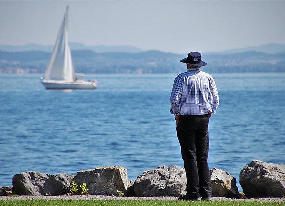 Alzheimer's and Dementia Stress