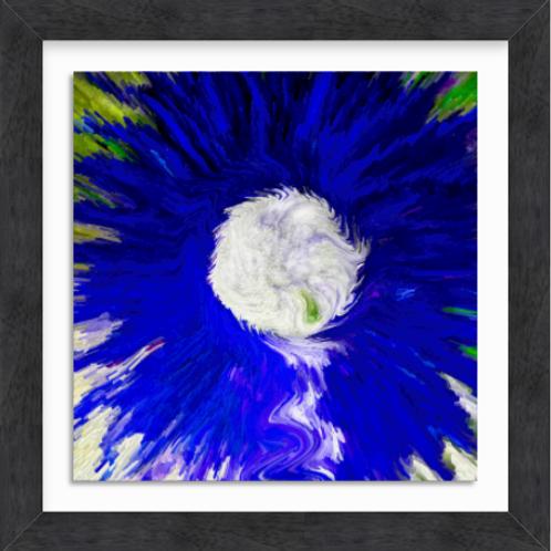 Blue Daisy (c) 2020