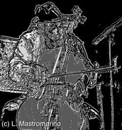 Mad Cellist (c) All Rights Reserved