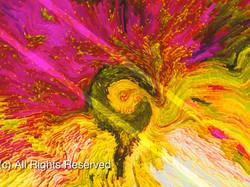 Flower Blast (c) All Right Reserved