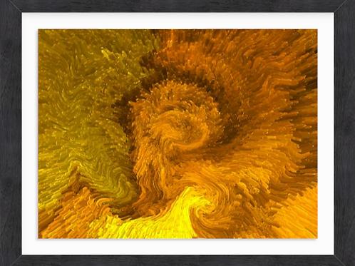Gold Chrysanthemum