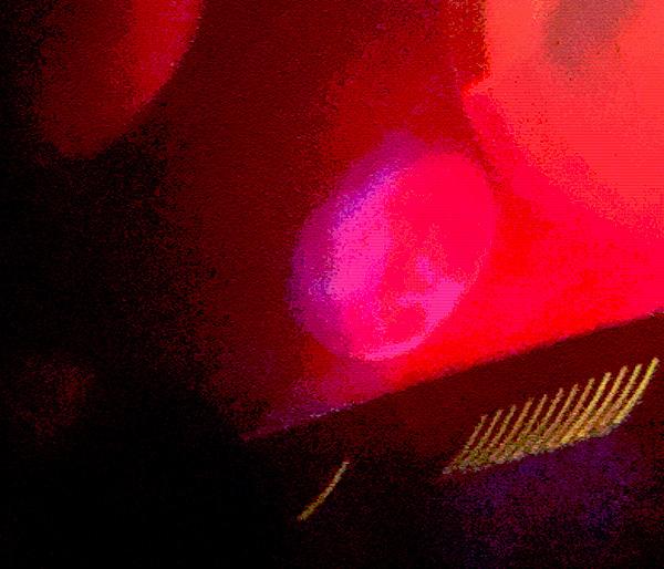 Red Breasts (c) Louisa Mastro
