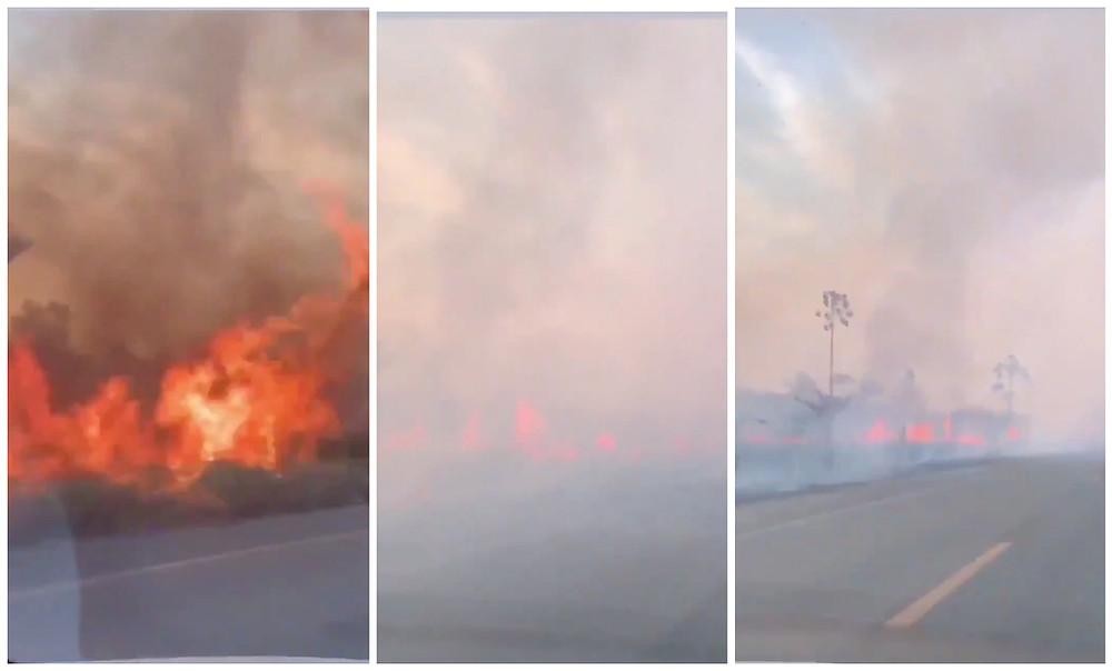 Incendio del Amazonas.