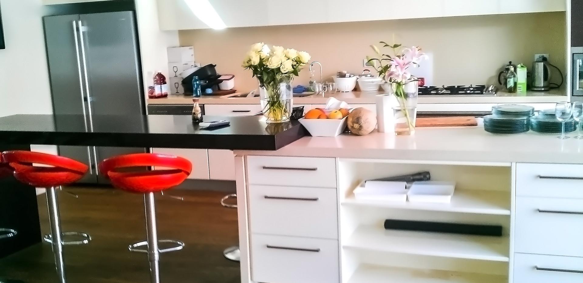 Contemporary Polyurethane Kitchen