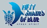 Logo FIFTY SHADES OF BLUE glacé