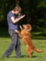 Personal play with toller
