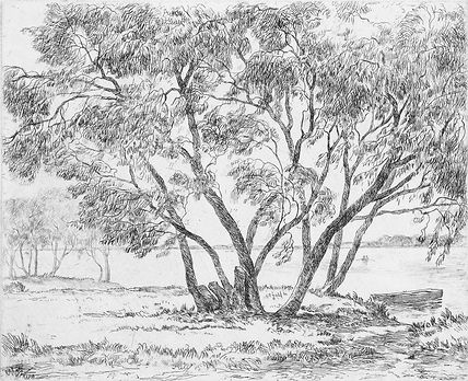 Friendly Willows etching.jpg
