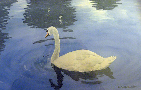 untitled Swan owned by granddaughter Lin