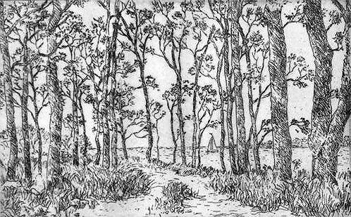 Woodland Path etching.jpg