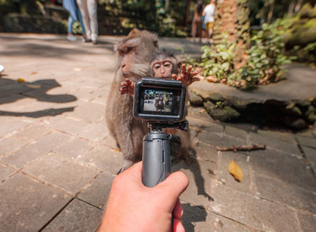 GoPro Hero8 Settings: Travel!