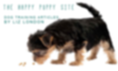 best-food-for-yorkie-puppy-long.png