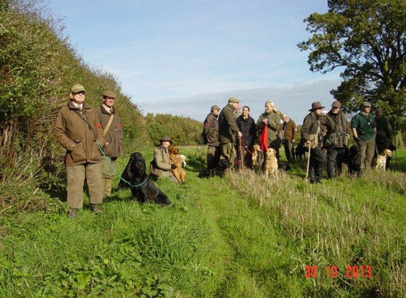 "Article: ""Ladies in the Field: Trends in Female Gundog Handling"""