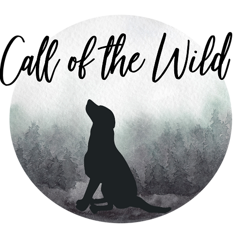 Dog Trainer Logo + Brand Collection: Call of the Wild