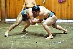 Rikishi à l'entraînement.