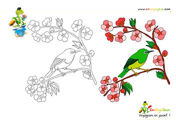 Coloriage Japon3.jpg