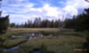 E_Wet2-1024x612.jpg