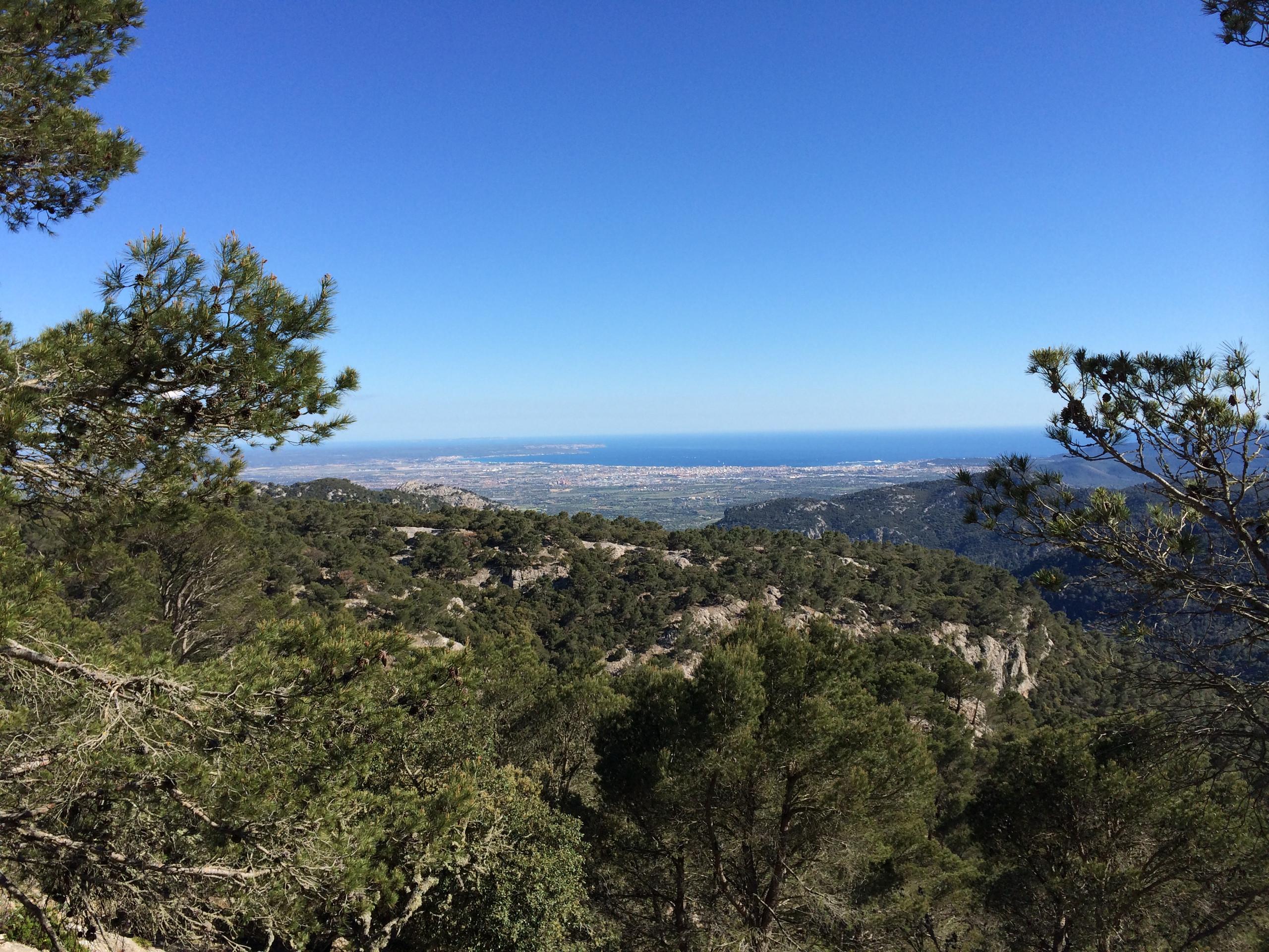 Blick nach Palma