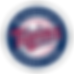 minnesota-twins-logo-transparent.png