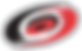 Carolina_Hurricanes.svg.png