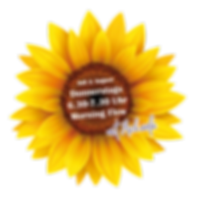 sunflower morning flow.png