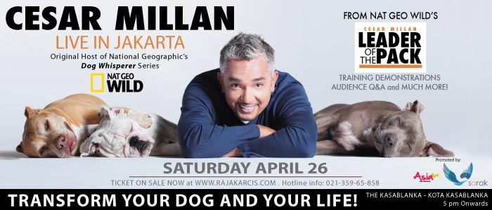 "Cesar Millan -""Dog Whisperer"""