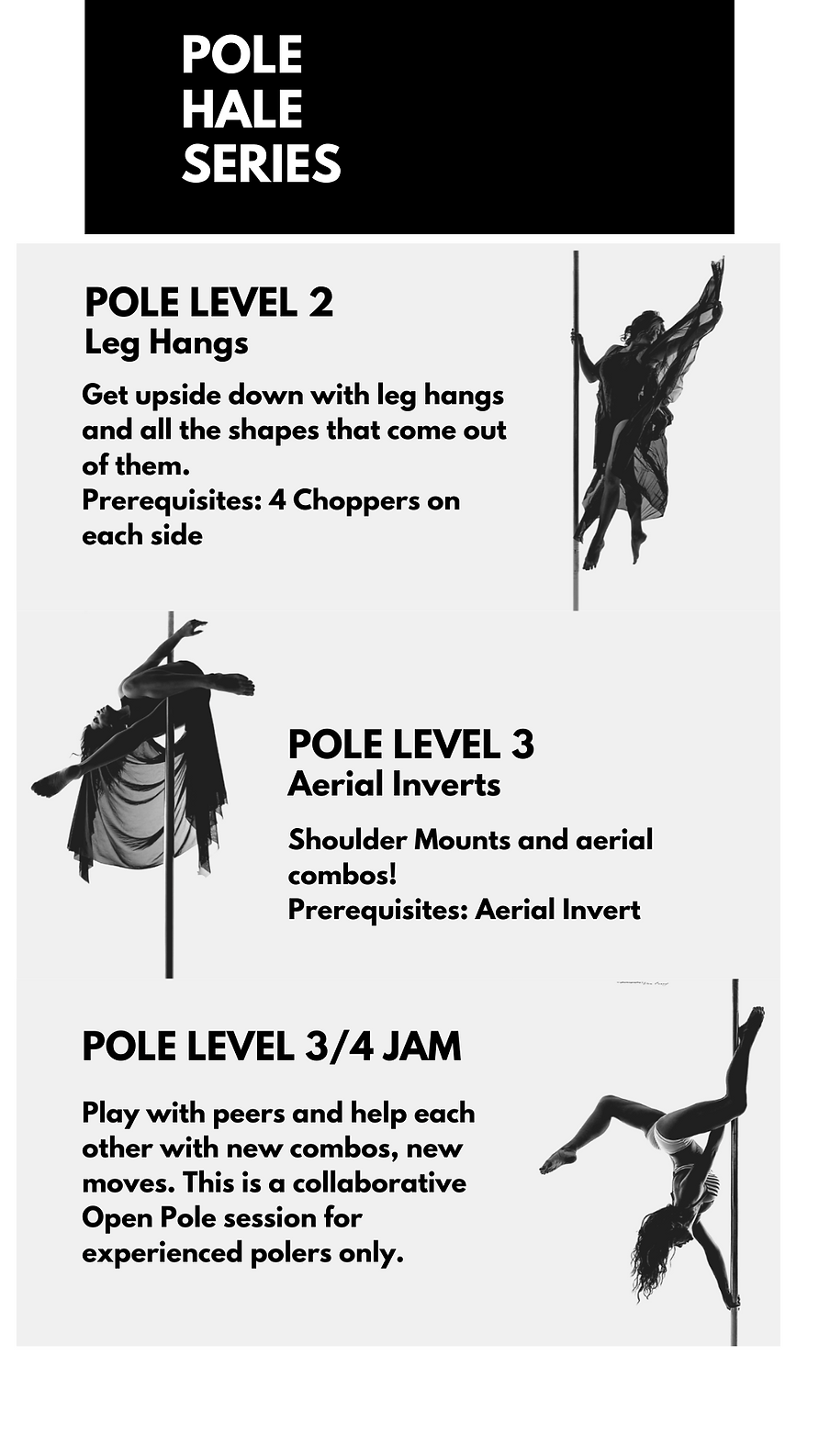 Copy of  POLE HALE Series (2).png