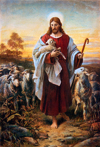 what does the bible say, bible animals, bible verses about animals, god and animals,