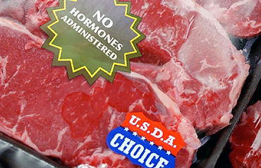 Animals used for food, eating animals, ethics of eating meat, meatless Monday, factory farming
