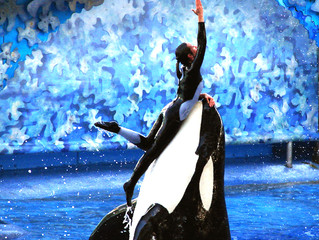 "Why SeaWorld's ""Praise Wave"" is Unworthy of Our Praise"
