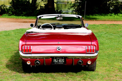 Ford Mustang For Hire.jpg