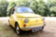 IMG_5972_edited.jpg