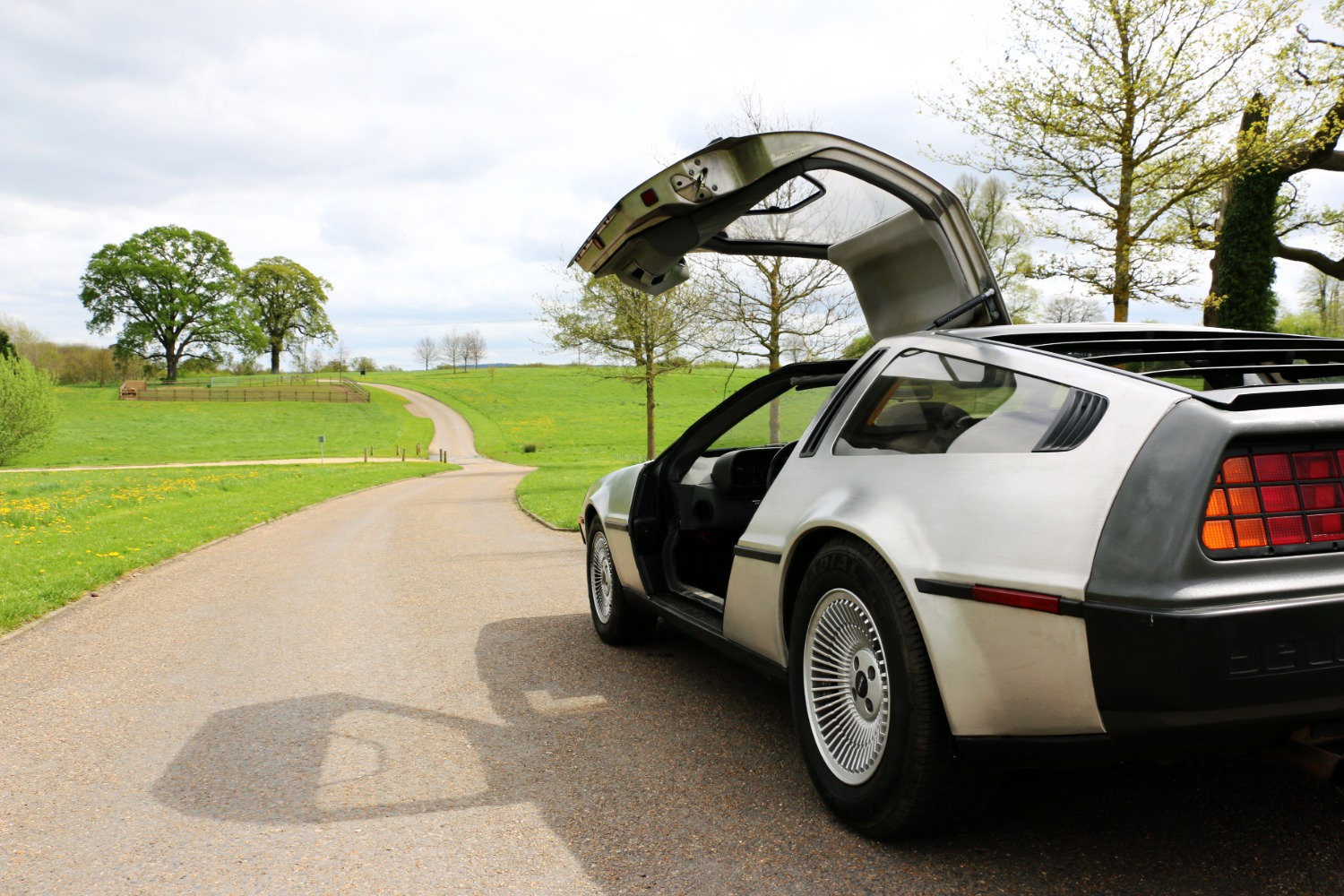 Delorean For Hire
