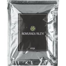 NOMURAEA-RILEYI.jpg