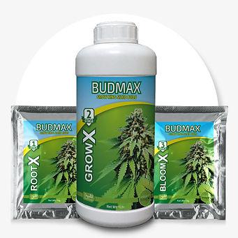 Budmax-Best-bio-fertilizer-for-cannabis-
