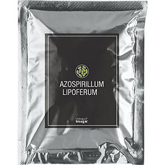 Azospirillum-lipoferum-1.jpg