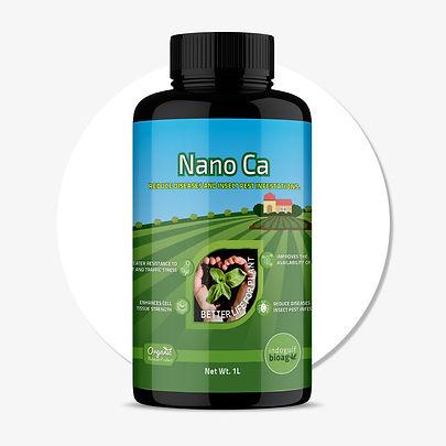 NANO-Ca.jpg