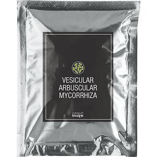 Vesicular-Arbuscular-Mycorrhiza-1.jpg