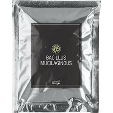 Bacillus-Mucilaginous-1.jpg