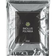Bacillus-polymyxa-1.jpg