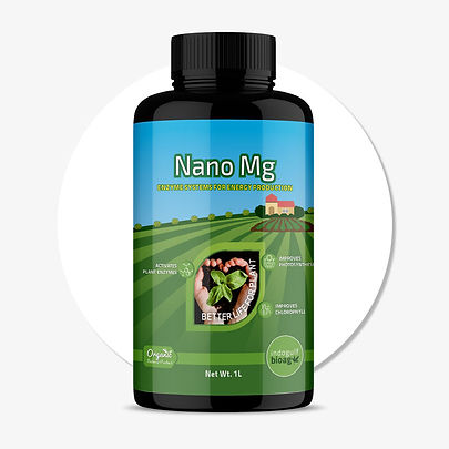 NANO-Mg.jpg