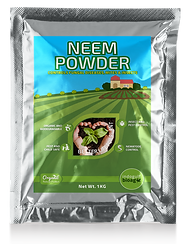 neem-powder.png