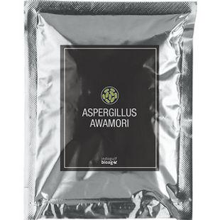 Aspergillus-awamori-1.jpg